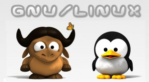Gnu/Linux Tux and Gnu