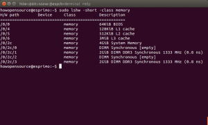 Check Physical Memory Linux and Ubuntu